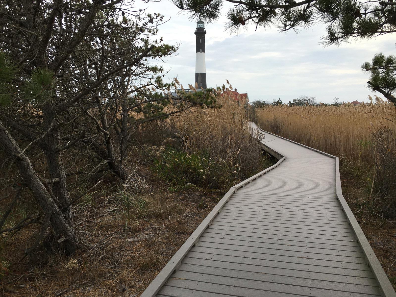 Boardwalk leading to lighthouse