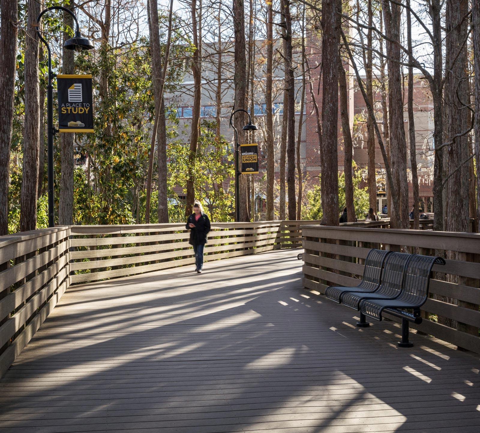 Person walking on boardwalk